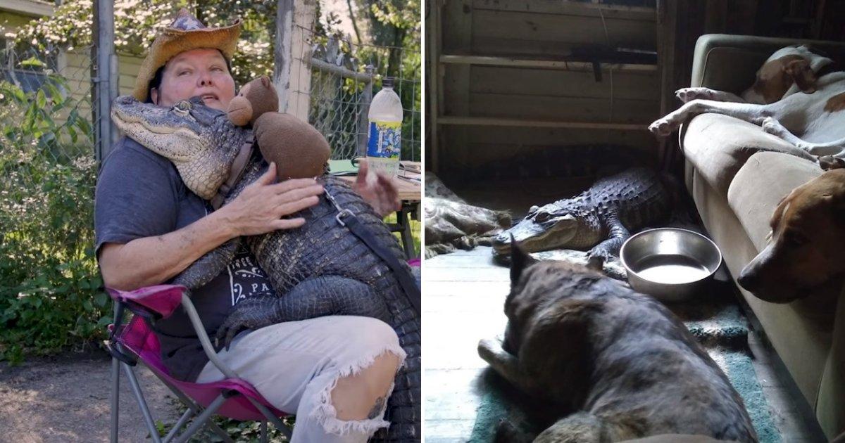 untitled design 2019 08 30t210504 254.png?resize=1200,630 - Cette femme est la meilleure amie d'un alligator qui vit chez elle avec ses chiens