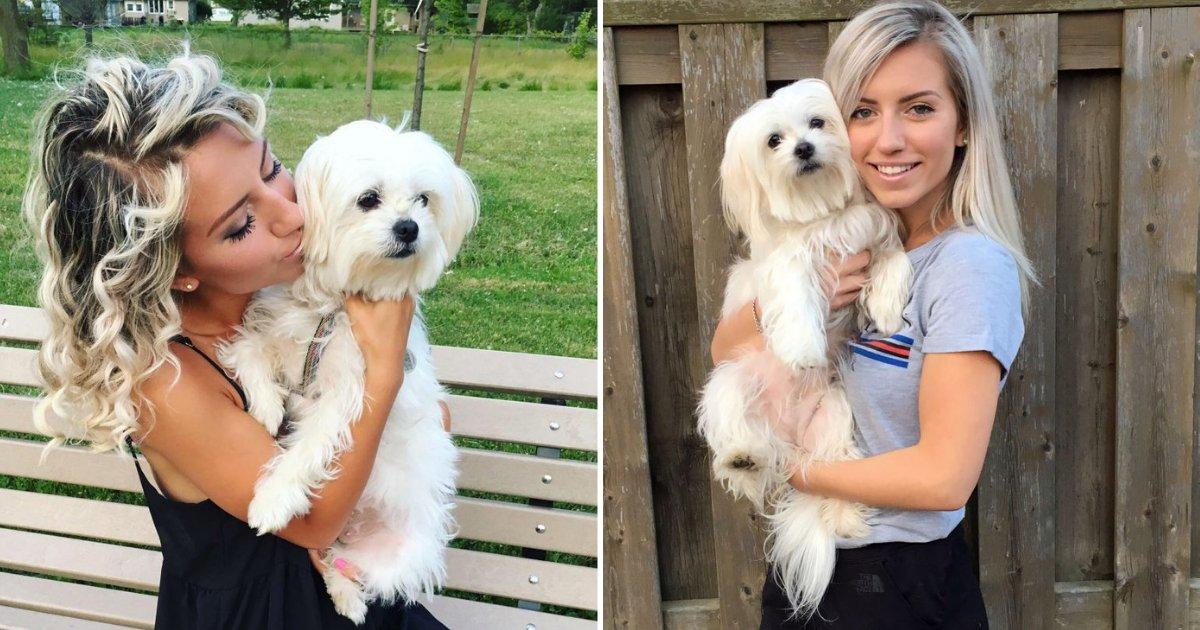 untitled design 72.png?resize=412,232 - Un chien thérapeutique aide une femme à surmonter ses crises d'épilepsie