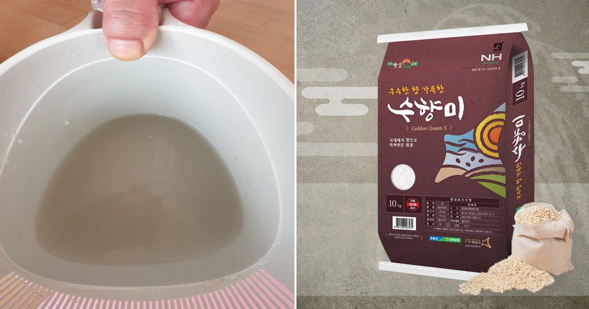 0920 4.jpg?resize=412,232 - 온라인 커뮤니티에서 불거진 '수향미' 쌀 곰팡이 의혹.jpg