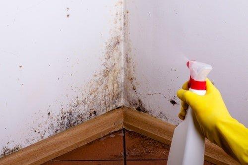 Resultado de imagen de eliminar humedad paredes