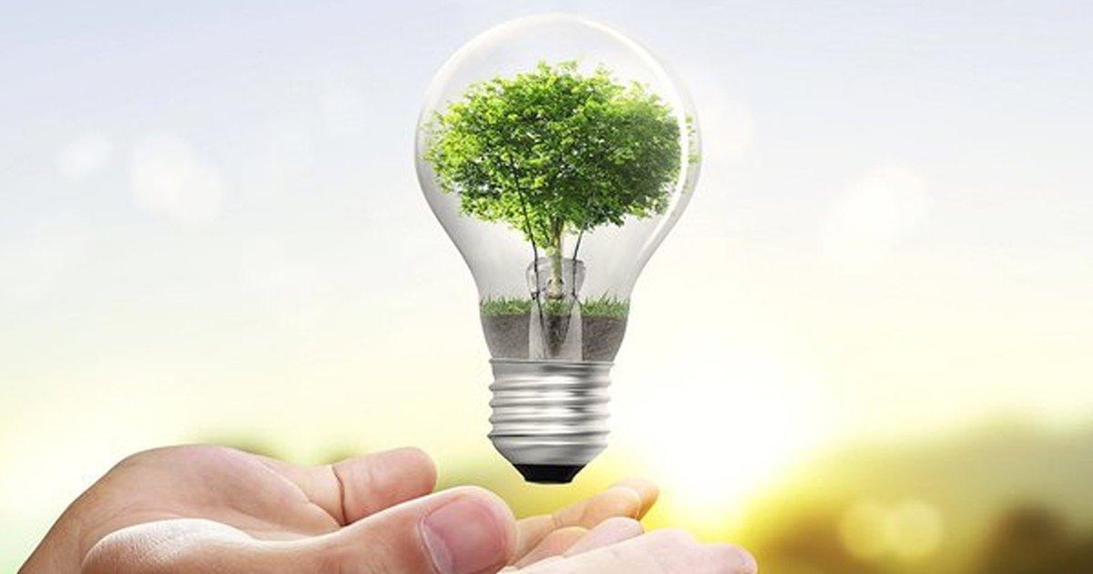 1a 1.jpg?resize=412,275 - 10 trucos ecológicos para una mejor vida