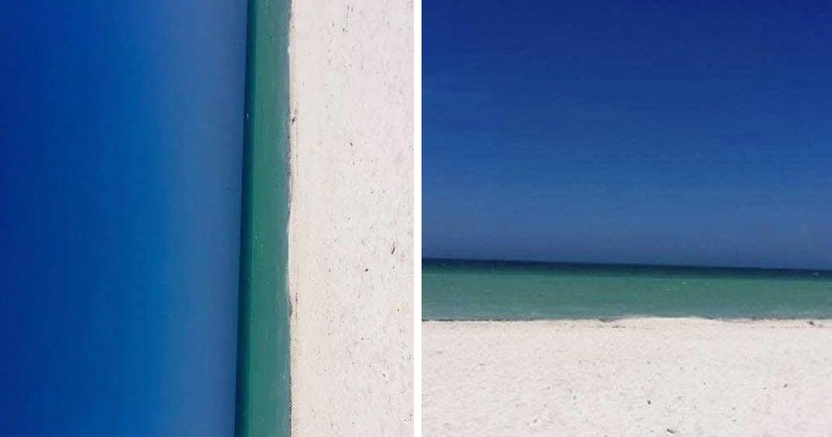 "3 88.jpg?resize=412,275 - ""바다 vs 문""... 해외에서 논란 중인 사진의 진짜 정체.jpg"