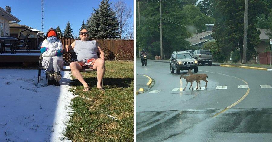 a3 10.jpg?resize=412,232 - 20+ Fotos que comprovam que não existe um lugar como o Canadá