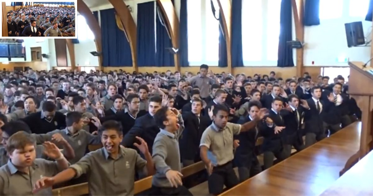 d3 8.png?resize=366,290 - A Farewell 'Haka' Chant For The Guidance Counsellor