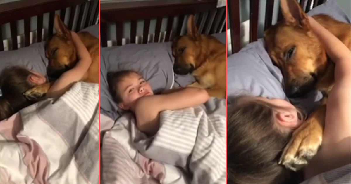 d6 11.png?resize=1200,630 - An Adorable Video of Kid Choosing to Sleep Beside the Dog