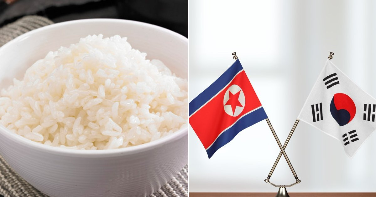 eca09cebaaa9 ec9786ec9d8c 65.png?resize=300,169 - 문재인 정부, 북한 '거절'에도 국가예산 '8억 원' 들여 쌀포대 제작했다