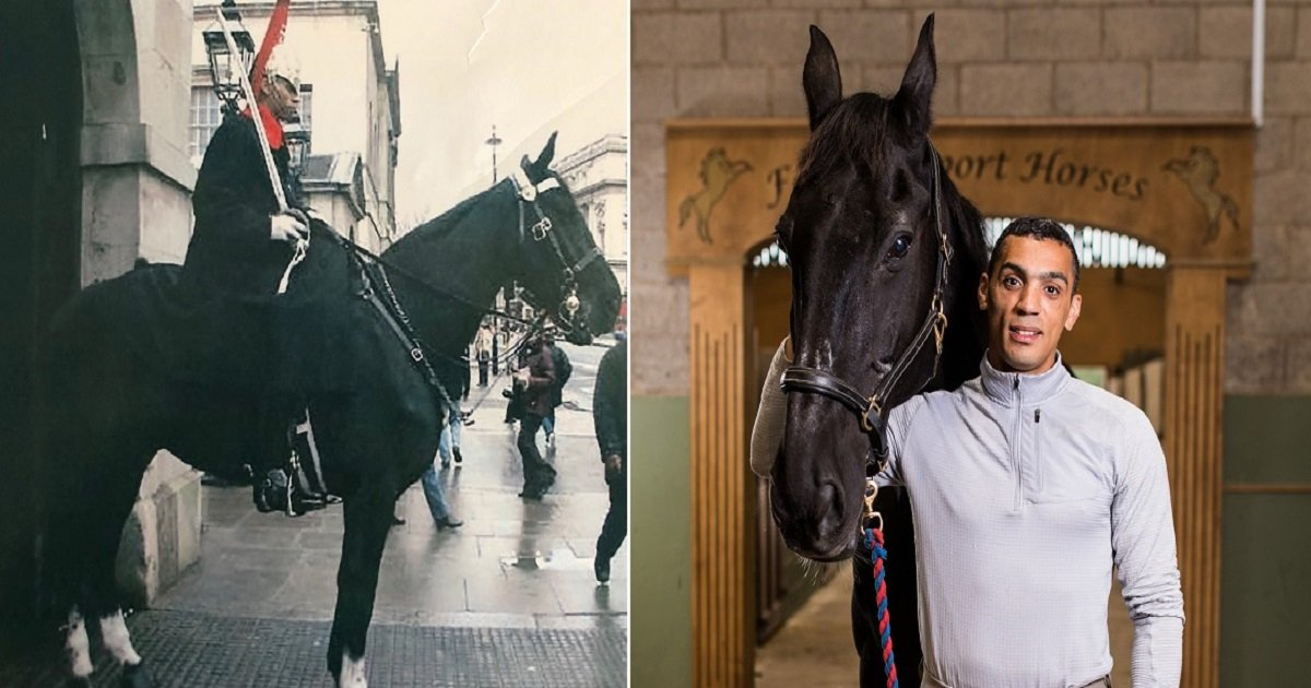 h5.jpg?resize=1200,630 - Man Adopted The Horse He Was Partnered With When He Served In The Queen's Personal Guard