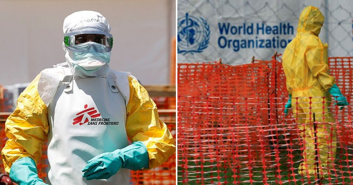 report5.png?resize=412,232 - Former World Health Organization Chef Warned of Possibility of Flu-Like Illness Outbreak That Could Potentially Circulate The World In Less Than Two Days
