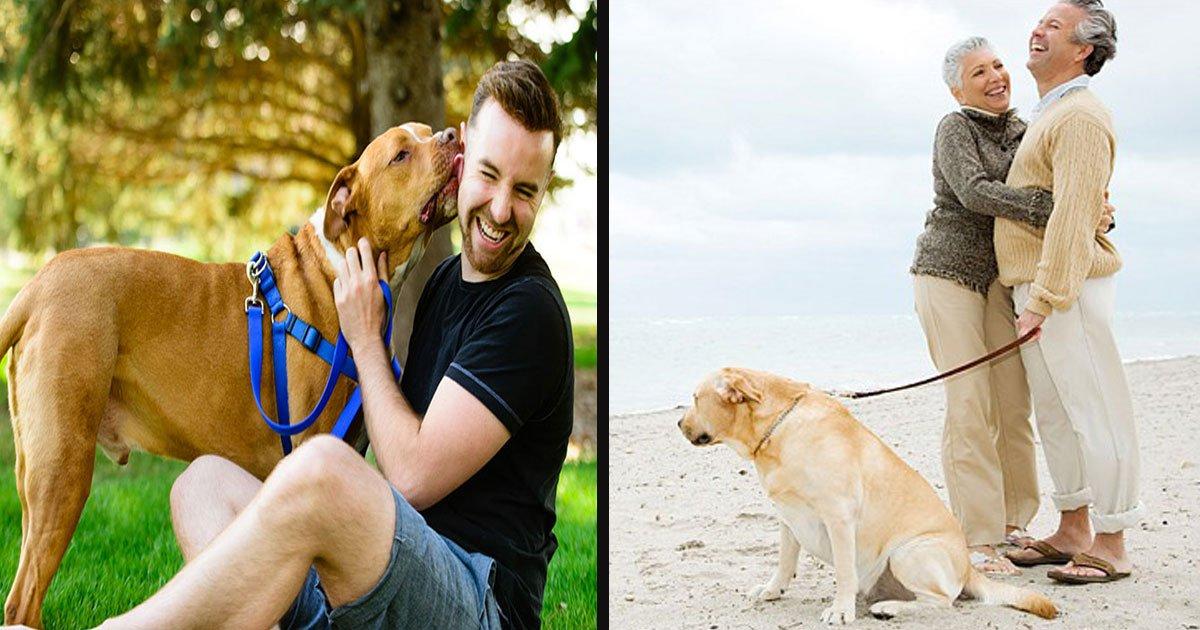 untitled 1 14.jpg?resize=300,169 - Plus de 70% des propriétaires de chiens admettent qu'ils préfèrent passer du temps avec leurs animaux plutôt qu'avec des personnes