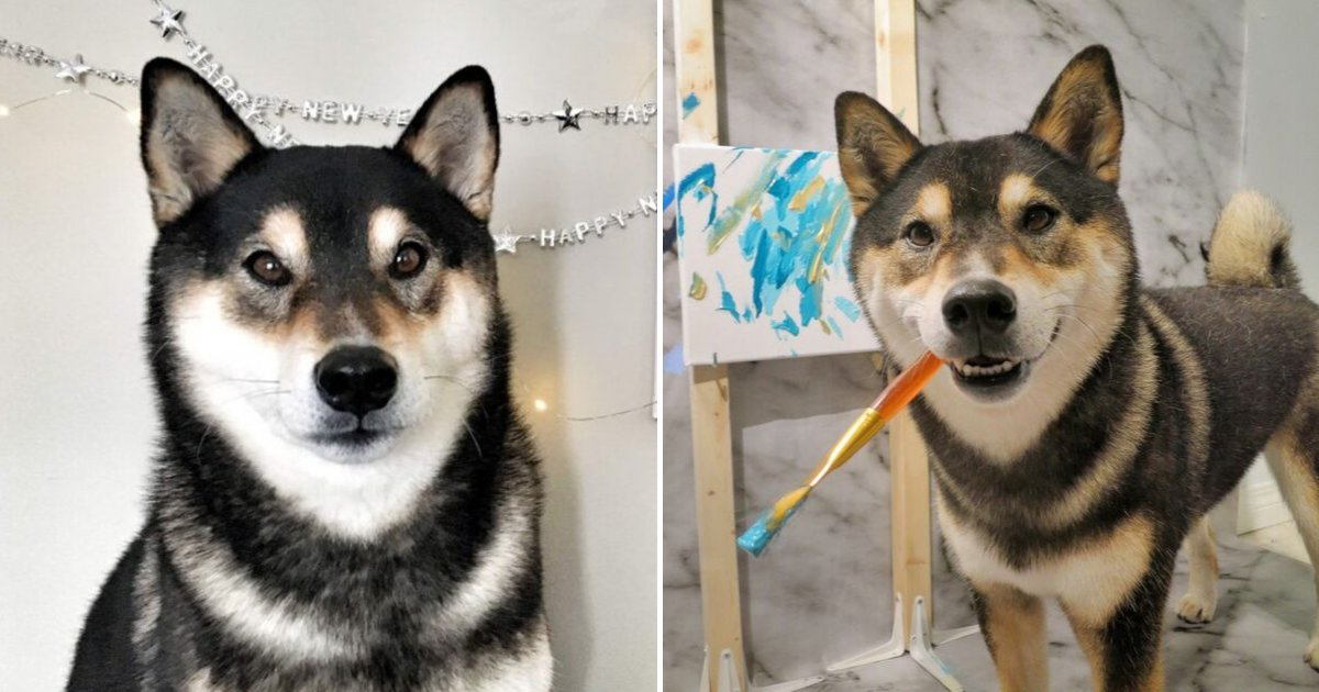 untitled design 41 1.png?resize=1200,630 - Pawcasso! Dog Makes A Living By Painting And Selling His Masterpieces