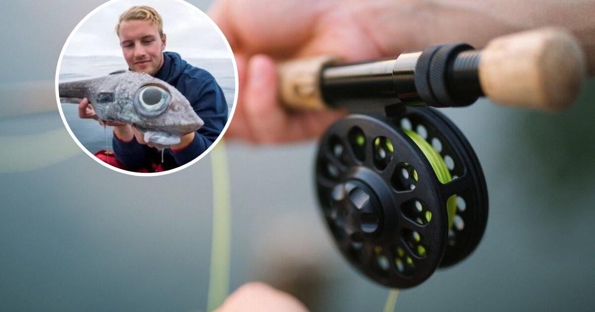 untitled design 68.png?resize=1200,630 - Un pêcheur a attrapé un poisson aux yeux bulbeux gigantesques qui ressemble à un extraterrestre