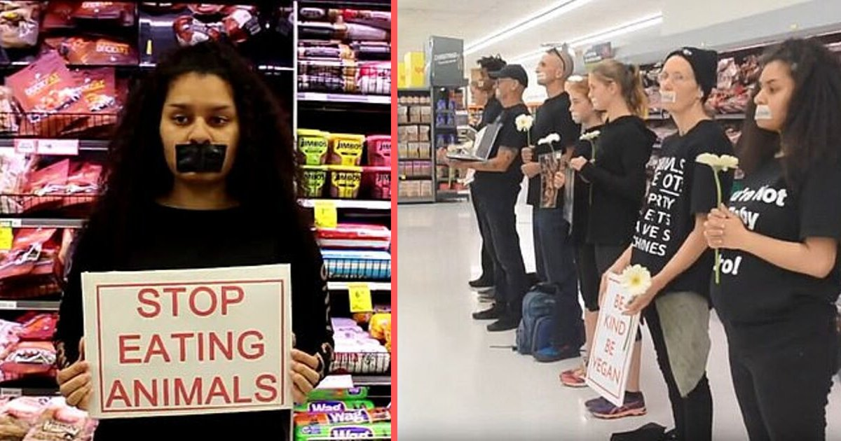 "y5 15.png?resize=1200,630 - Vegan Protestors Blocked Meat Aisle in a Supermarket as They Sang ""Give Life a Chance"""