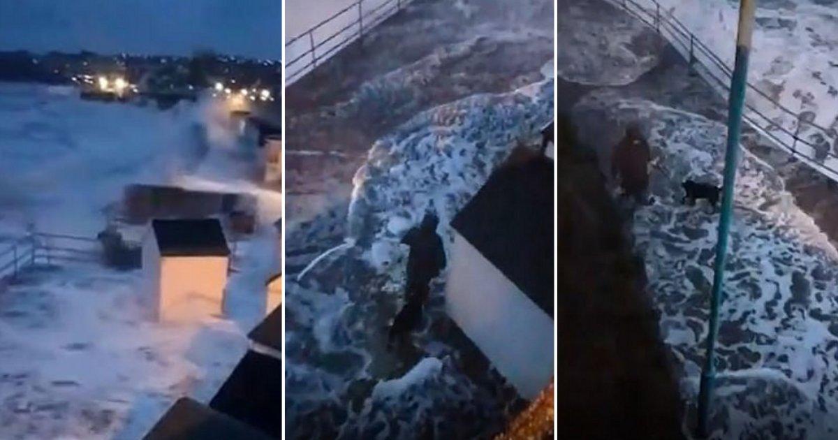 72677324 448517629113139 5108133007475081216 n.png?resize=412,232 - Une femme qui promenait son chien en bord de mer a presque été emportée par une vague énorme