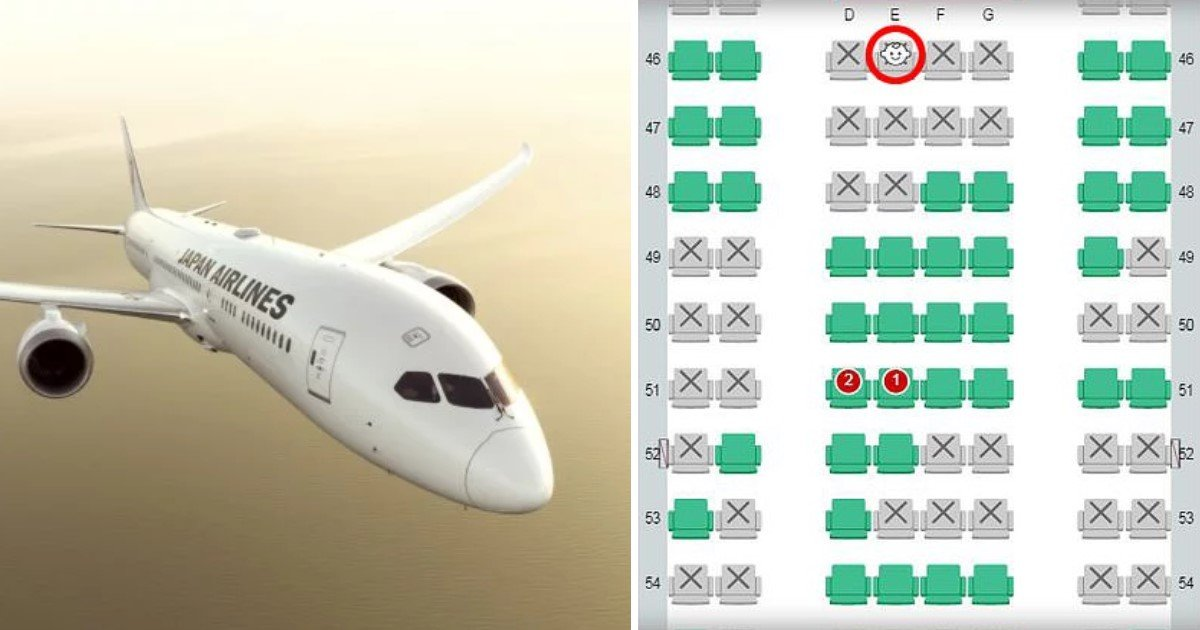 a.jpg?resize=1200,630 - An Airline Introduced Seat Map That Displays Seats Reserved For Toddlers