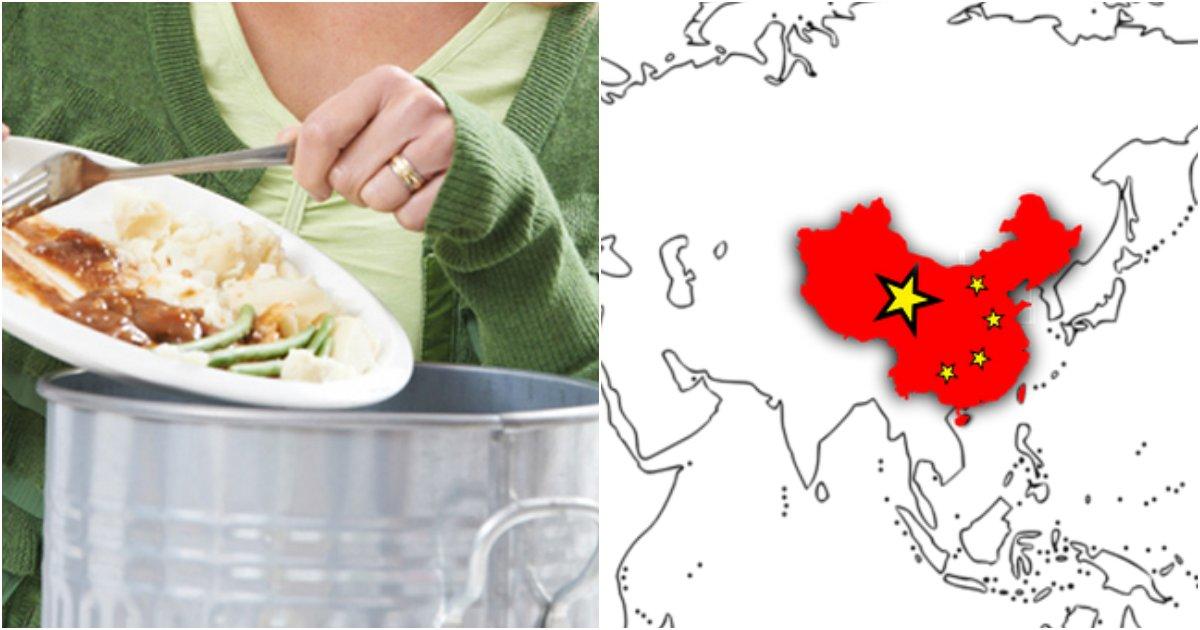 collage 92.png?resize=1200,630 - 14억명 중국인들이 '음식물 쓰레기'를 처리하는 충격적이고 '엽기'적인 방법 (영상)