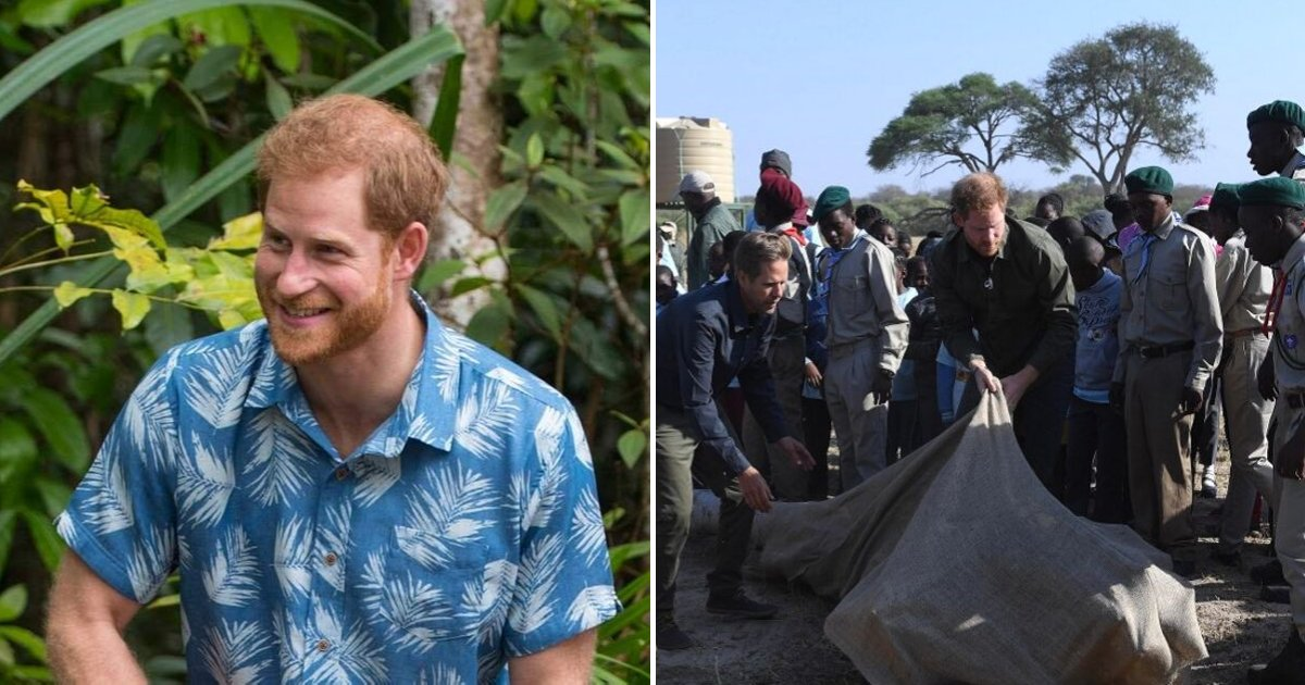 duke5.png?resize=1200,630 - Prince Harry Urges Everyone To Join Together To Fight Climate Change