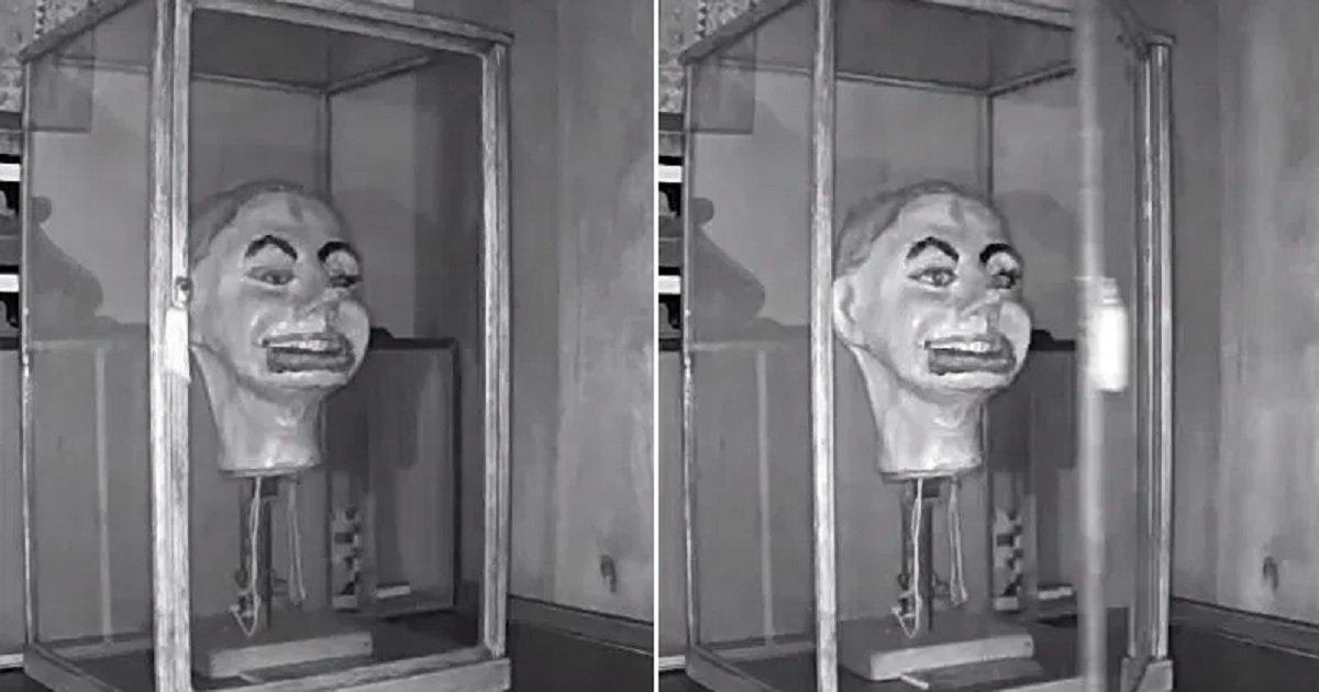 f3 5.jpg?resize=1200,630 - Découvrez le moment terrifiant où une poupée ventriloque prend vie toute seule