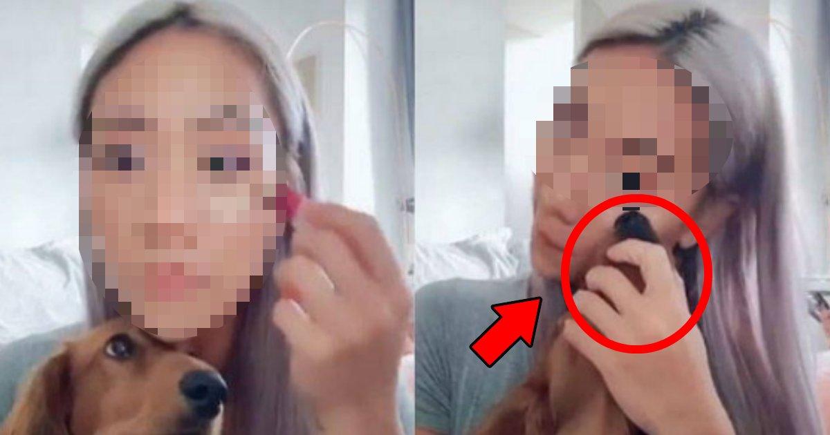 hana.png?resize=412,232 - 犬の鼻をパフがわりに?Youtuberが動物虐待の疑いで大炎上!