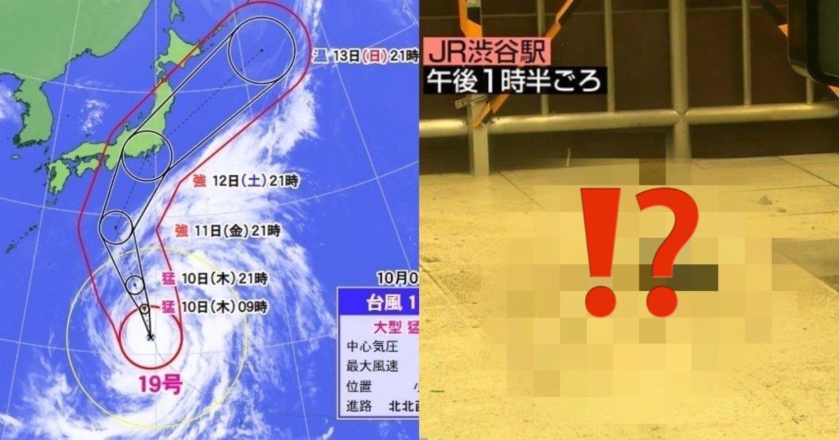 img 5891.jpg?resize=412,275 - 中国ネット民が驚愕!台風の影響で閑散とした東京に○○が大量発生!!