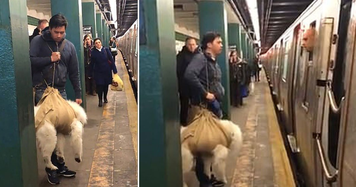 man carries dog subway conductore refused.jpg?resize=412,232 - Man Tried To Get On A Train With His Dog In A Burlap Sack - The Conductor Refused To Let Him Board The Train