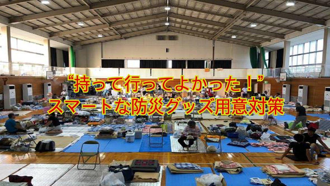 mf hashimoto01.png?resize=412,232 - 「災難特集」荷物になるだけの無駄な防災グッズは?