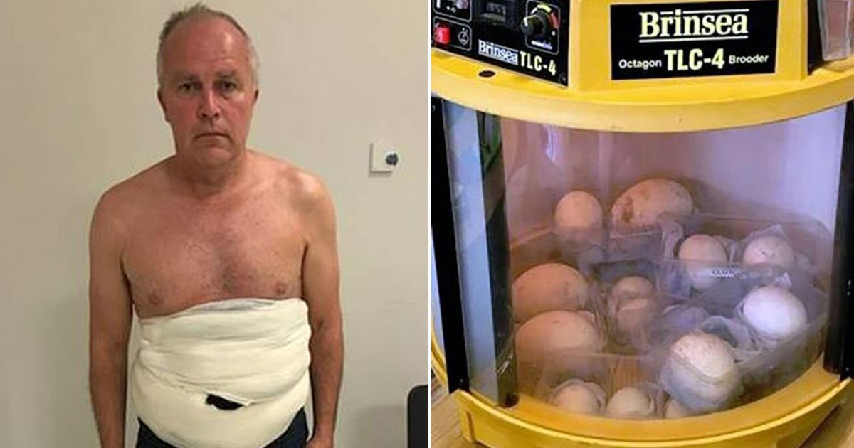 pablo escobar of egg trade.jpg?resize=412,232 - SAS Wildlife Hunter Dubbed 'Pablo Escobar Of The Egg Trade' Caught With Rare Eggs Worth £100,000