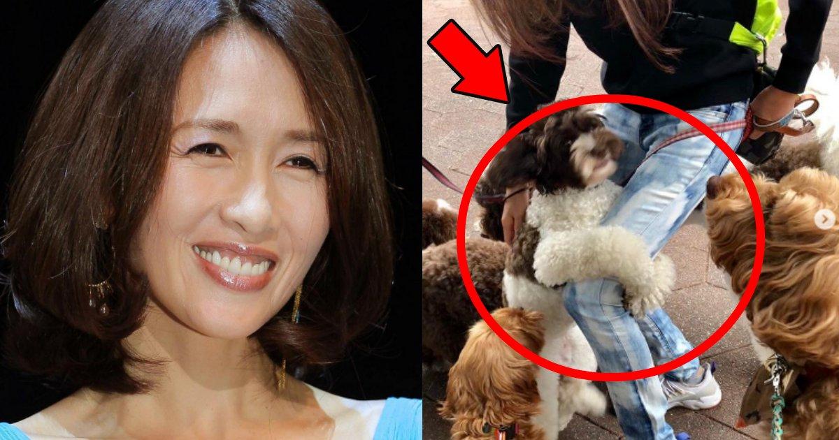 shizuka.png?resize=300,169 - 工藤静香が愛犬の写真を下〇タでヤジる→「本当に下品」と批判殺到!