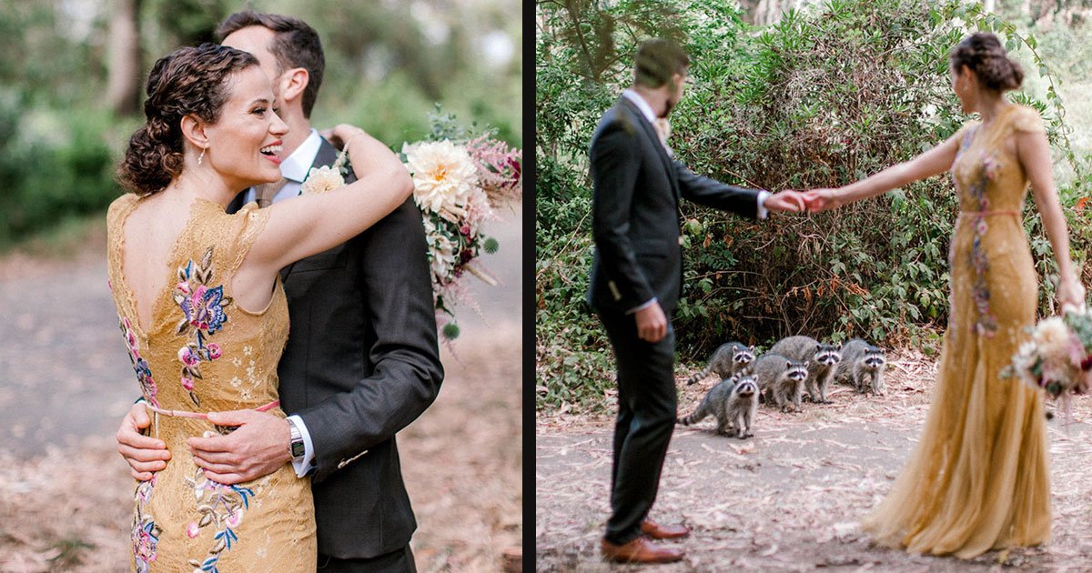 untitled 1 29.jpg?resize=1200,630 - An Adorable Family Of Raccoons Crashed A Wedding Photoshoot