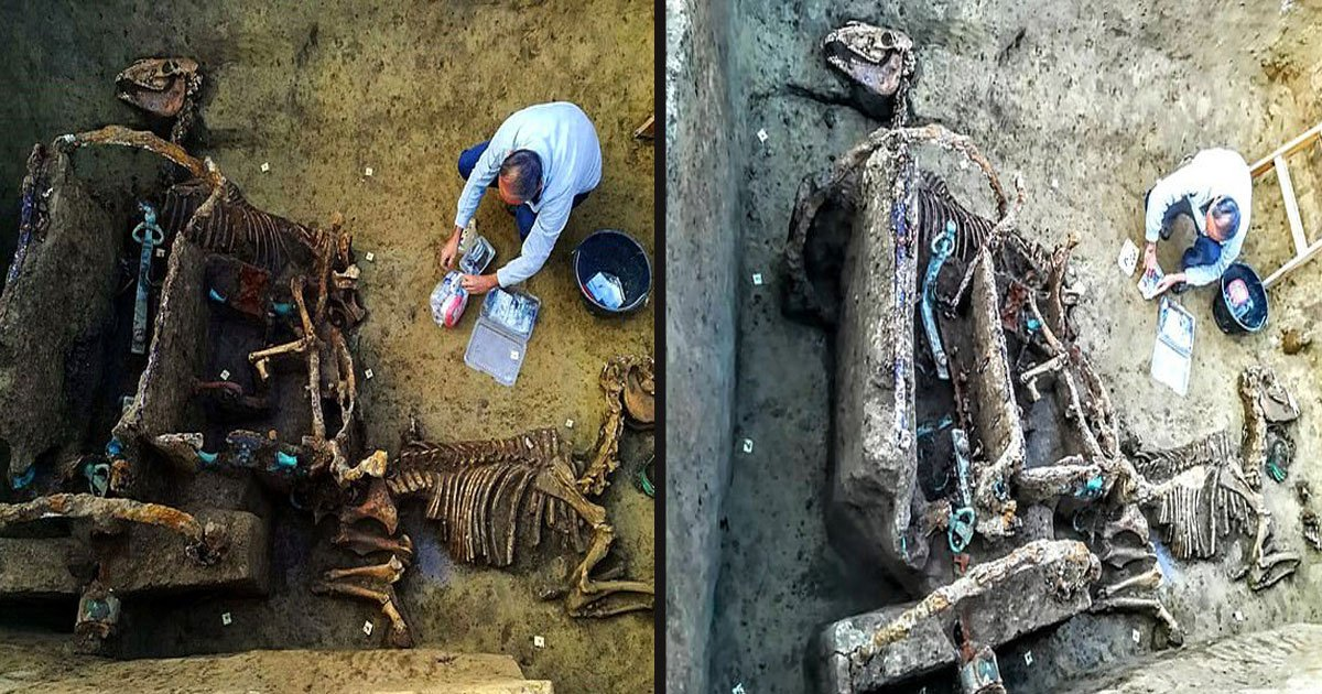untitled 1 72.jpg?resize=412,232 - Chariot Buried With 2 Horses 1,700 Years Ago As Part Of A 'Ritual' For Wealthy Family Found In Croatia