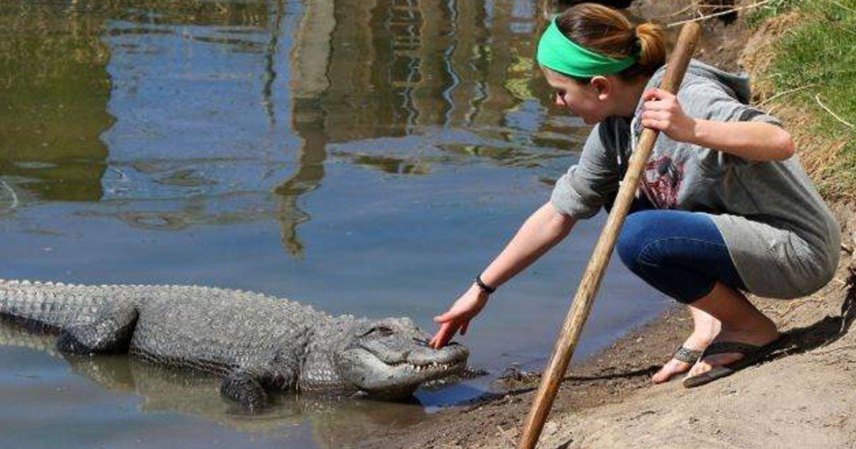 13 year old alligator wrangler.jpg?resize=1200,630 - 13-Year-Old Alligator Wrangler Feeds And Transports Reptiles At Her Family's Farm