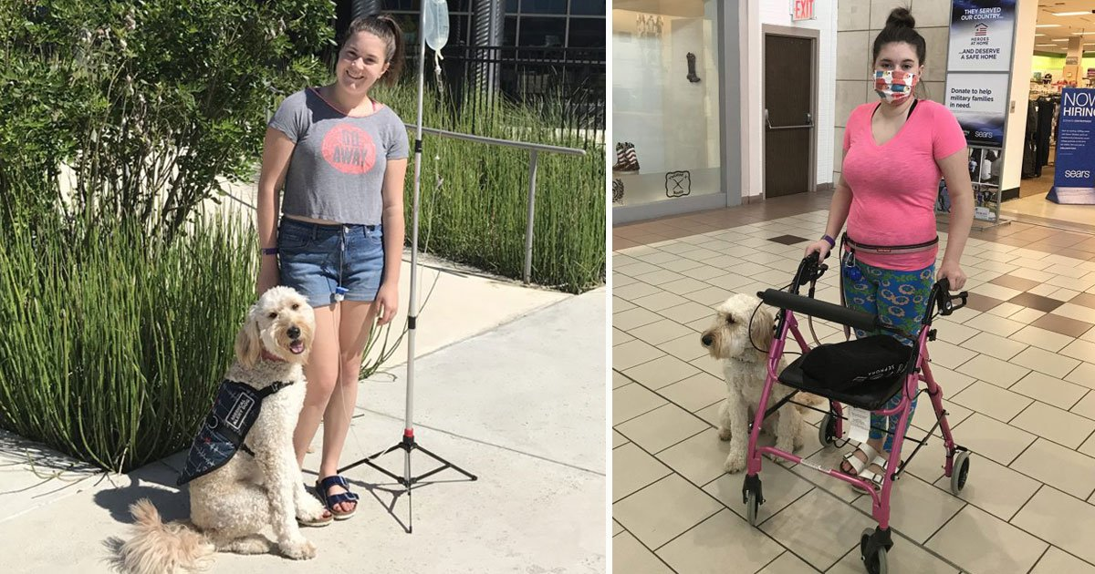 canine saves teen life.jpg?resize=1200,630 - Canine Saves Life Of A Teen On A Daily Basis By Alerting Her Before Deadly Reactions