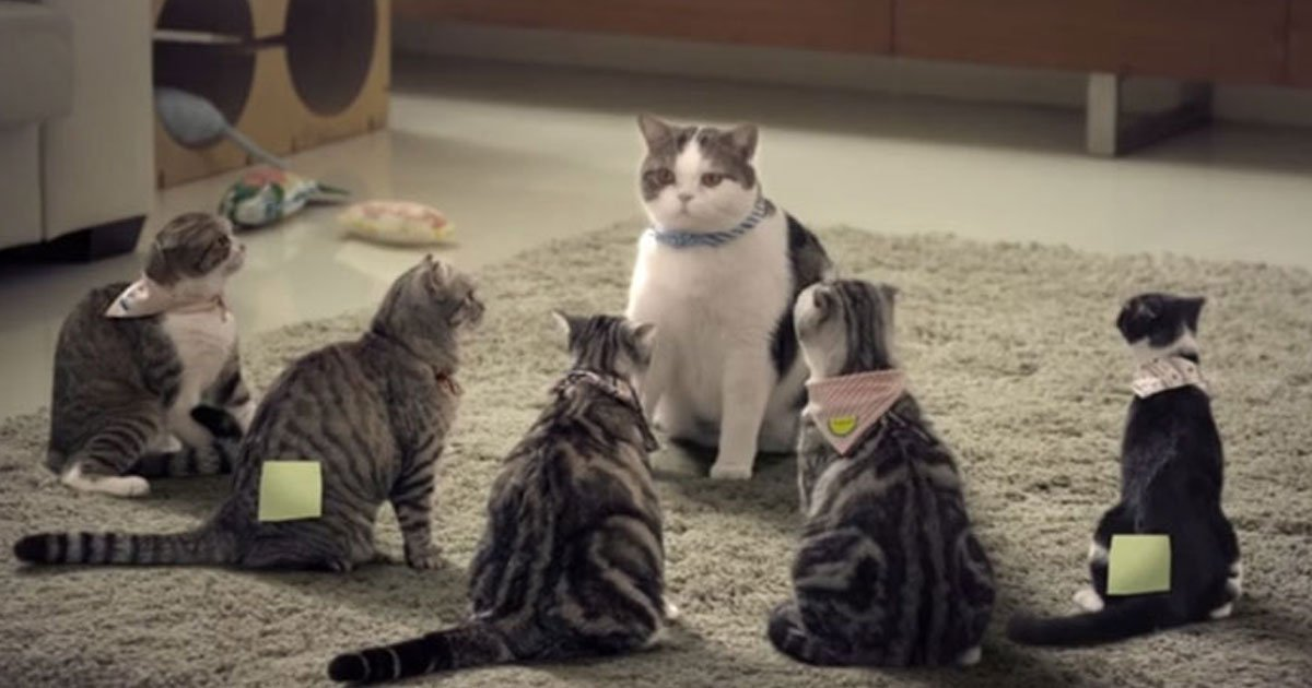 cat advertisement.jpg?resize=366,290 - Hilarious Advertisement Of A Design Studio That Features Notorious Cats