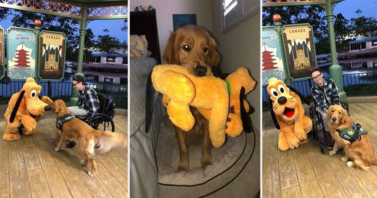d10.jpg?resize=412,232 - Service Dog Atlas Meets Pluto at Walt Disney World and The Adorable Video Goes Viral