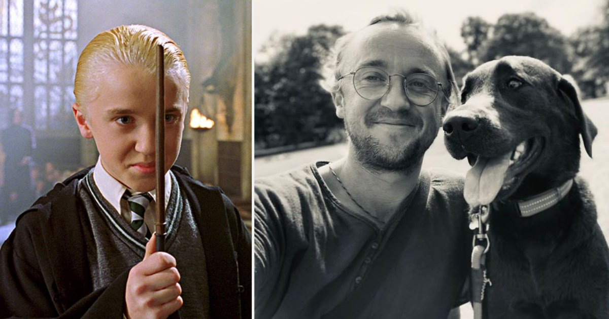d3.png?resize=412,232 - 32 Years Old Tom Felton Regrets Aging and Gets Teased by Co-Star Matthew Lewis