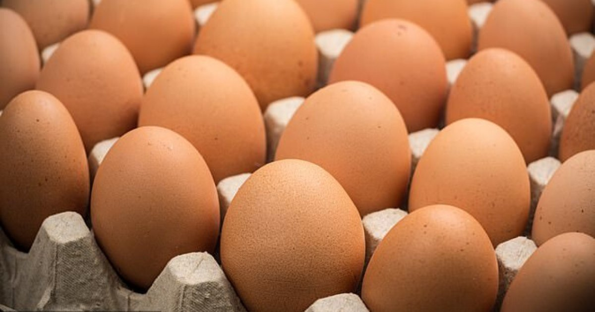 eggs3.png?resize=412,232 - 42-Year-Old Man Passed Away After Trying To Eat Many Eggs To Win A Bet