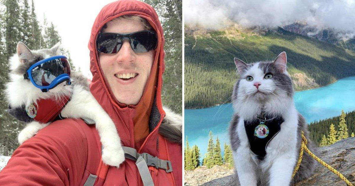 gary the adventurous cat.jpg?resize=300,169 - Voici Gary, un chat aventureux qui adore le kayak et la randonnée