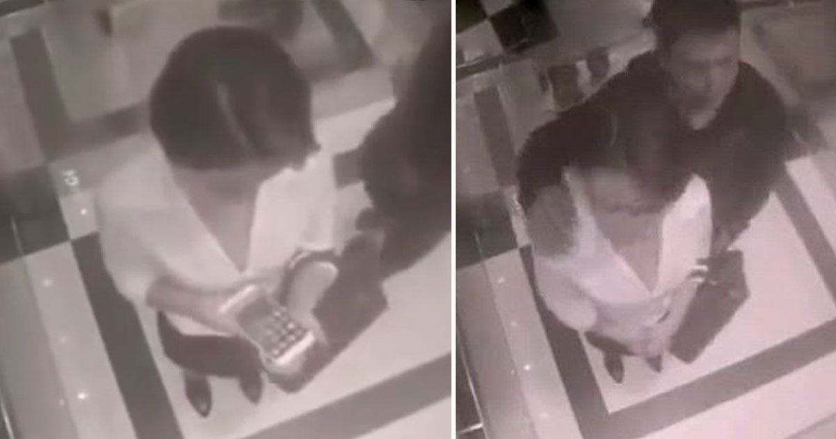 woman fought molester.jpg?resize=732,290 - Woman Taught A Man A Great Lesson Who Tried To Touch Her In An Elevator