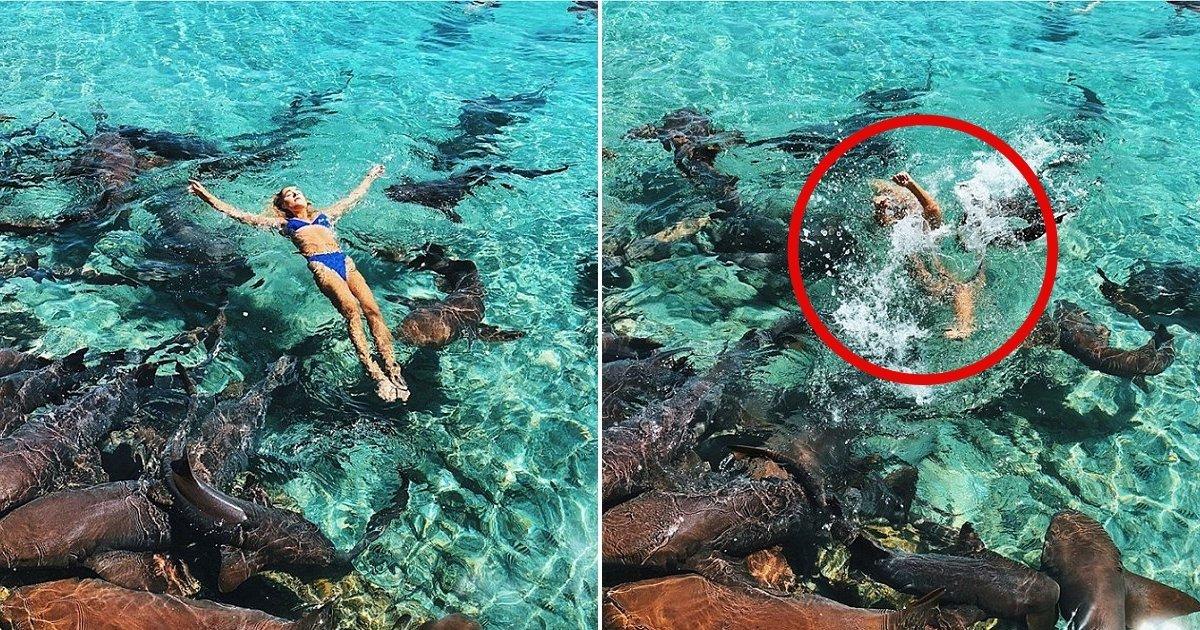 1 9.jpg?resize=412,232 - Es Modelo De Instagram Y Fue Atacada Por Un Tiburón Mientras Posaba Para Una Foto