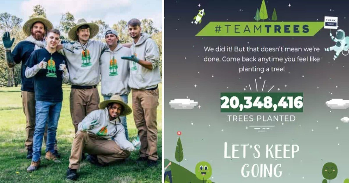 a 102.jpg?resize=412,232 - YouTubers Teamed Up And Planted 20 Million Trees Within Just Two Months Of Their Incredible Campaign