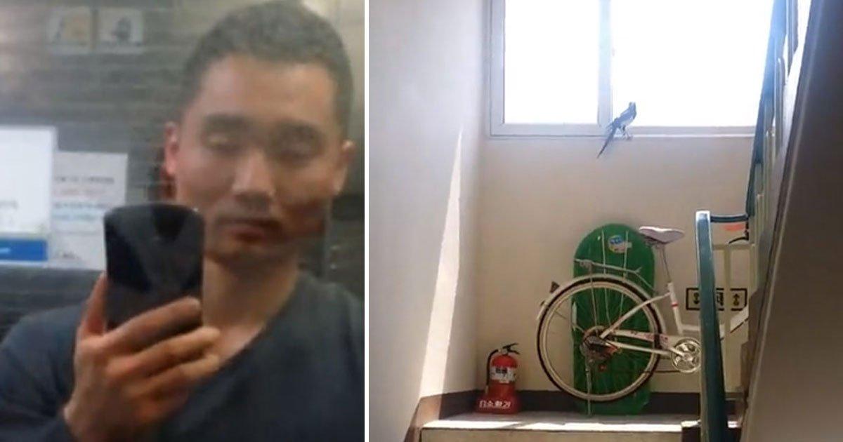 bird stuck stairwell.jpg?resize=1200,630 - Man Helped Free A Bird Who Got Stuck Inside The Stairwell