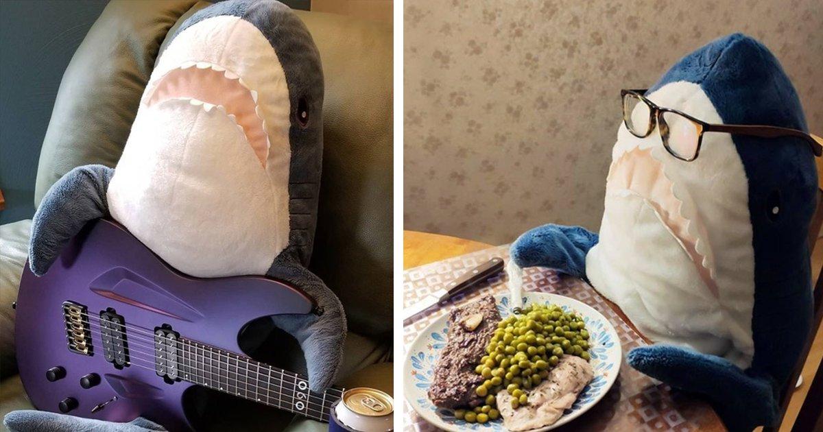 ftt.png?resize=412,232 - İnsanlar Bu Köpek Balıklarına Aşık Oldu! IKEA'nın Peluş Köpek Balıklarından İnsansı Pozlar