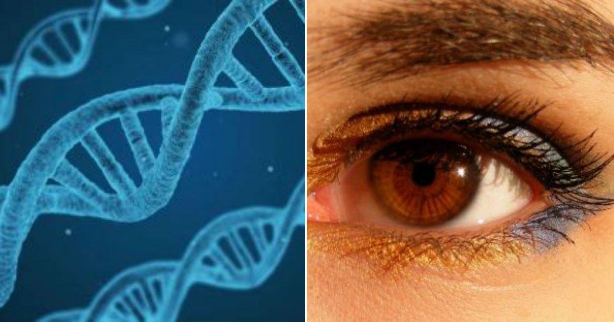 "gggg 6.jpg?resize=412,232 - ""5개 이하에 해당한다면""...당신이 '축복받은' 유전자인 지 알아보는 간단한 방법"