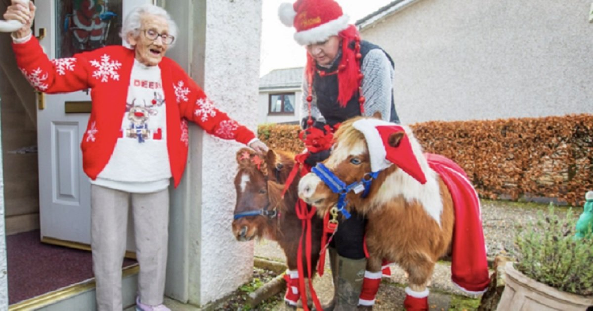 h3 5.jpg?resize=412,232 - 95-Year-Old Woman Got A Lovely Surprise Visit From Mini-Horses Dressed As Santa