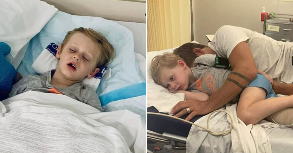 snake6.png?resize=412,232 - 4-Year-Old Boy Was Injured By 15-Foot Scrub Python Before Dad Came To The Rescue