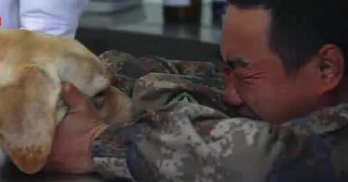 soldier6.png?resize=1200,630 - Un soldat a fondu en larmes alors qu'il faisait ses adieux à son chien gravement malade