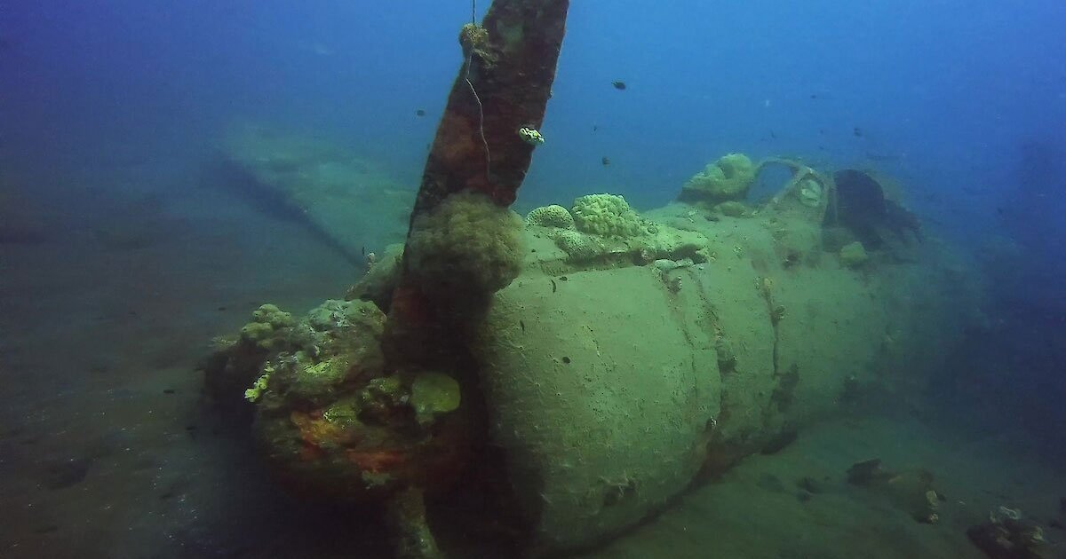 untitled 1 9.jpg?resize=300,169 - A Historic WWII Plane Was Found 60 Years Later