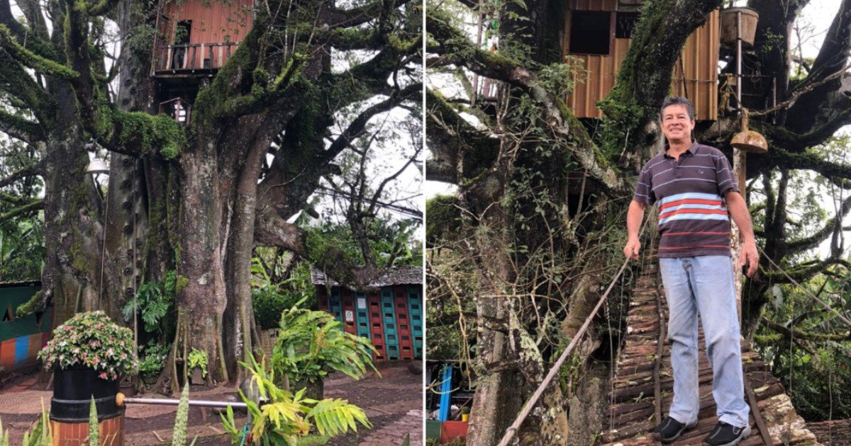 1 169.jpg?resize=1200,630 - A Man Created An Unique Treehouse Hotel In Galapagos Islands