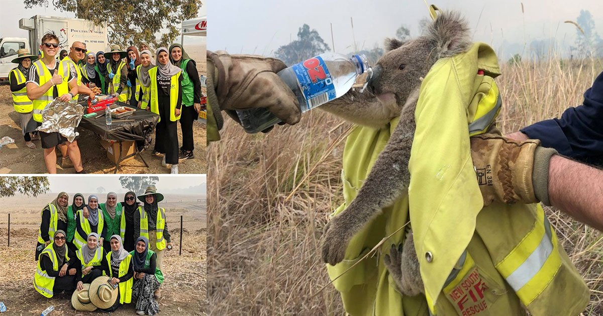 12 amazing stories from the australian bushfires that prove humanity still exists.jpg?resize=1200,630 - 12 Heartwarming Stories From The Bushfires In Australia That Prove Humanity Still Exists
