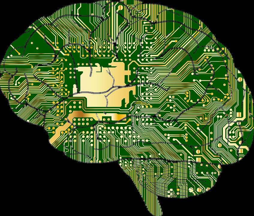 Anatomy, Biology, Brain, Thought, Mind, Thinking, Skull