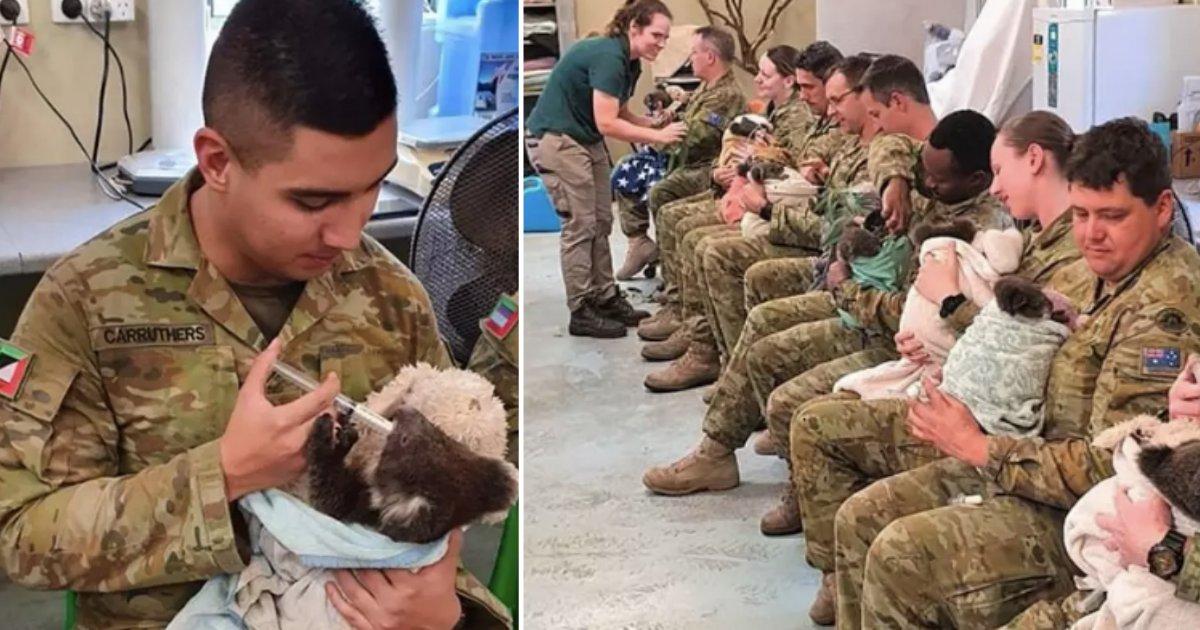 2 78.png?resize=1200,630 - Des soldats de l'armée australienne prennent soin des koalas de brousse pendant leur pause
